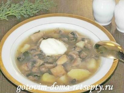 грибной суп из шампиньонов рецепт