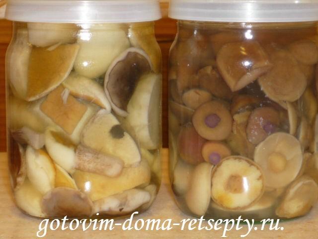 рецепты маринованные грибы на зиму 1