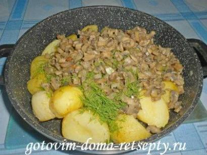 молодая картошка с грибами шампиньонами и чесноком 6